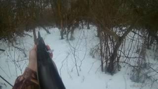 Охота на косулю Волгоградская область.
