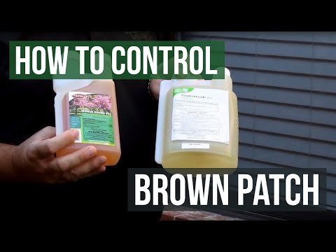 Video How to Control Brown Patch Fungus with Honor Guard PPZ Fungicide (Propiconazole)