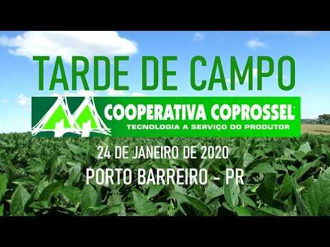 Tarde de Campo - Porto Barreiro