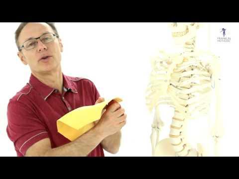 Was ist eine Kontraktur des rechten Schultergelenks