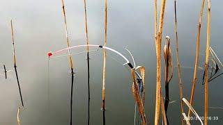 Боковой кивок весна северо запад ловля
