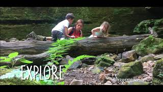 Hike & Explore Southernmost Illinois