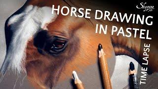 🎨 Horse Drawing In Soft Pastel / Dessiner Un Cheval Au Pastel Sec • Time Lapse • Skyzune ART