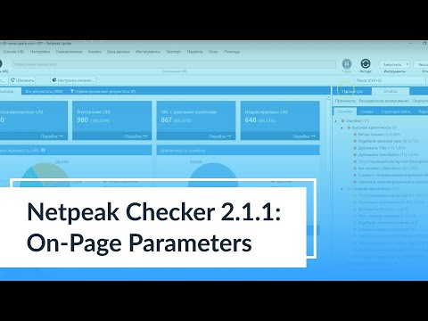 Videos from Netpeak Checker