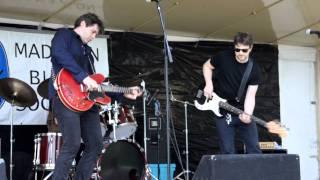 Alex Wilson at the Madison Blues Fest ...
