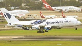 SYDNEY'S FINEST MORNING Heavies | Sydney Airport Plane Spotting