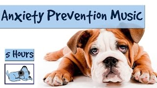 """5 Hours of """"Anxiety Prevention"""" Music for Dogs and Pets. Fireworks and Storms - Problem Solved!"""