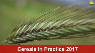 Visit Cereals in Practice – Free at Saphock Farm, Oldmeldrum, 6 July 2017, 2.45pm – 6.30pm