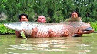 Смотреть онлайн Подборка: Ужасы, которые были на рыбалке