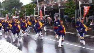 舞華(2011・ひのよさこい祭)
