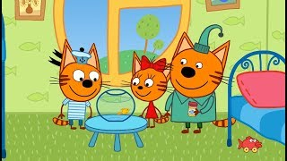 Три кота - Золотая рыбка - 51 серия