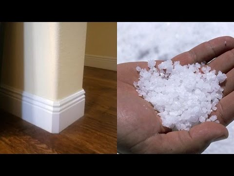 Pour Salt in Four Corners Of Your Rooms and See What Will Happen