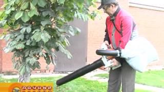 Выбор пылесоса-воздуходувки видео