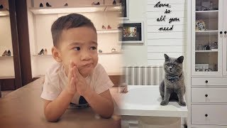 Merengek Minta Kucing Kesayangannya Balik, Rafathar: Mau Ambil Summer di Rumah Ate Nanas!