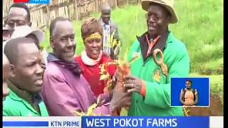 West Pokot County spends over 22 million Kenya shillings to revive its cash crop farming industry