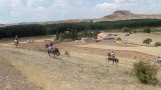 preview picture of video 'ALFAMBRA 18 AGOSTO 2007 - ENCIERRO CAMPERO'
