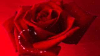 Gerd Böttcher - Roses for you