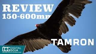 The Awesome Tamron 150-600mm G2 Lens | Review & Giveaway