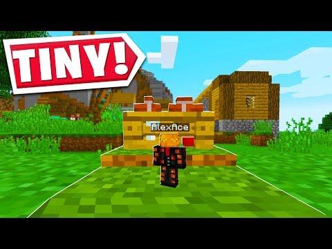 Minecraft BUT IT'S TINY!