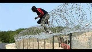 Zimbabwean Emigrating To South Africa