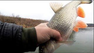Рыбалка на оке в ноябре 2020г