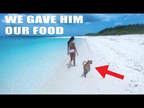WE FOUND ABANDONED DOG ON TINY ISLAND