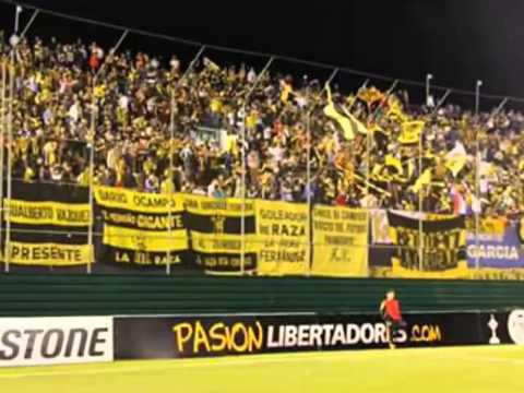 """""""Emilio Garcia - Club Guarani"""" Barra: La Raza Aurinegra • Club: Guaraní de Asunción"""