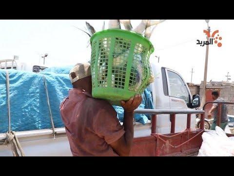 شاهد بالفيديو.. #حچي_com في حالة فريدة .. صيادو العراق يشترون السمك من إيران