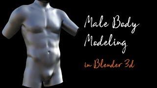 Male Torso Modeling