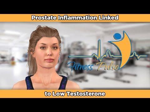 Prostata Fibrose