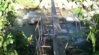 preview picture of video 'Home-made Bridge over Wild Sabah River'