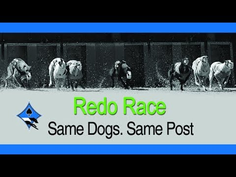 bestbet First Final of the 2018 660 & 550 Redo Stakes