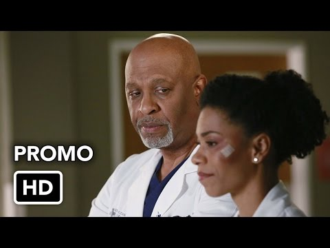 Grey's Anatomy 11.16 (Preview)