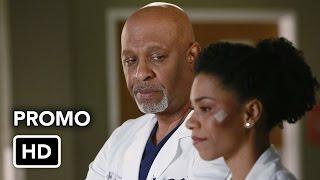 Grey's Anatomy 11x16 Promo