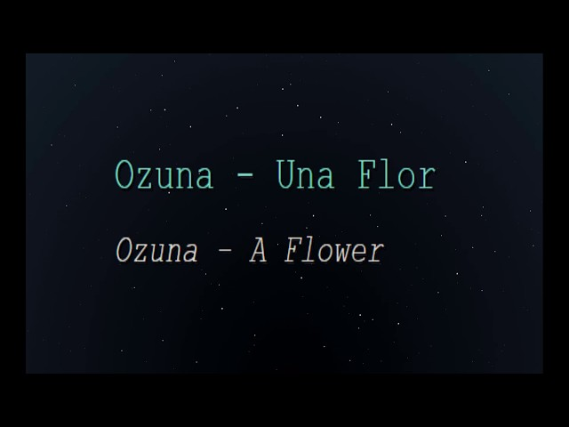 Ozuna - Una Flor (English Lyrics Translation)