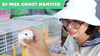 Chị Thơ Đi Mua Chuột Hamster