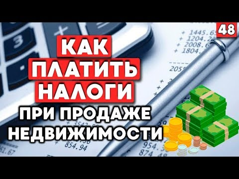 Как отчитываться в налоговую? Как сдавать декларацию?  Как платить налоги?
