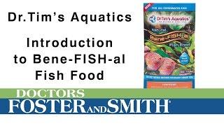 DrTims Aquatics Bene-Fish-al Fish Food | DrsFosterSmith.com