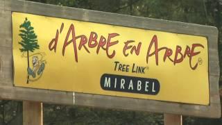 Arbre en Arbre Mirabel - Parc du Domaine Vert