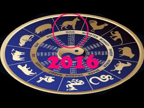 Гороскоп на 2017 по месяцам от василисы володиной