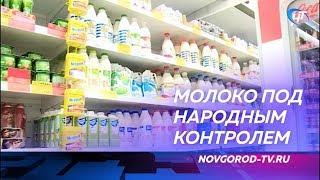 Активисты «Народного контроля» начали серию рейдов в новгородских магазинах