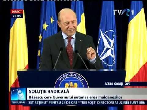Traian Băsescu cere guvernului ordonanţă de urgenţă pentru eutanasierea maidanezilor