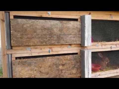 comment construire clapier lapin
