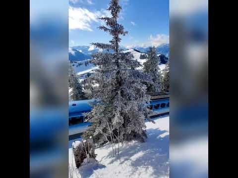 Winter Wonderland auf der Rigi 🇨🇭❤️ #verliebtindieschweiz