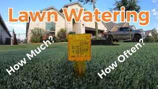 Best Lawn Watering Schedule & Lawn Watering Tips