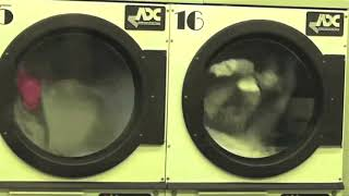 Night, North Street, Launderette