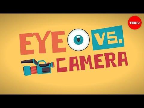 העין והמצלמה, כיצד הן פועלות ובמה הן נבדלות?