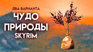 Skyrim | Два варианта прохождения Чудо природы + уникальный кинжал Крапивник!