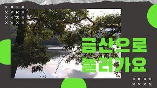 [감성뉴스] 금산에 가 보다 (visit Geumsan)