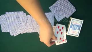 Plast Spelkort--Bee(blue)--poker Fuska.avi